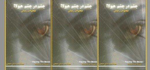 کتاب چشم در چشم هیولا- از هنگامه حاج حسن