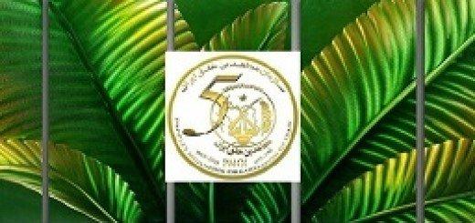 سبزه در آمد از آهن-50سالگی سازمان مجاهدین خلق ایران مبارک