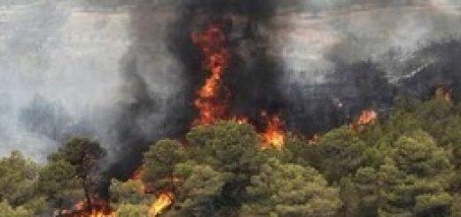 آتش سوزی مراتع و جنگلهای گیلانغرب