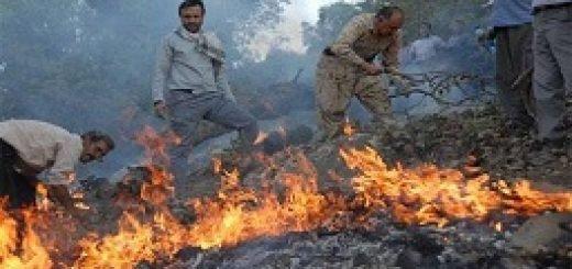 به آتش کشیدن مراتع جنگلی دالاهو توسط سپاه پاسداران کرمانشاه