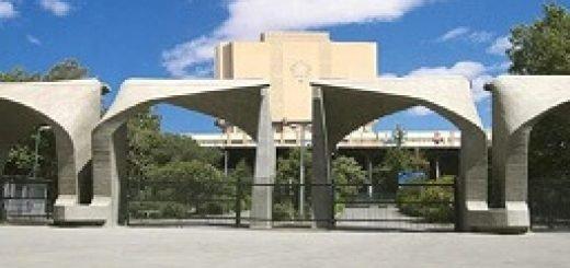 دانشگاه تهران در حمایت از گردهمایی