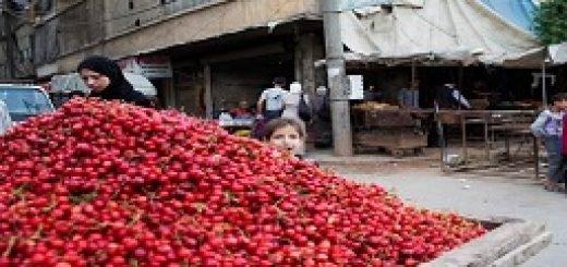 حلب ازسر گرفته شدن زندگی