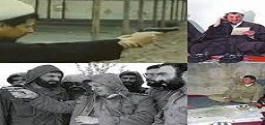 hashemihadehnamaki