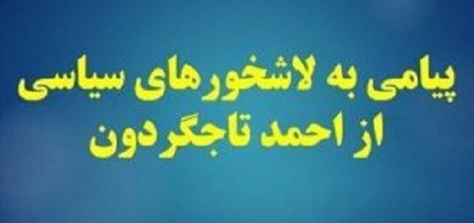 پیامی-به-لاشخورهای-سیاسی-از-احمد-تاجگردون